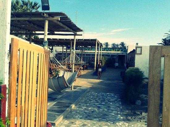 Kokopelli Hostel Paracas: Hamacas