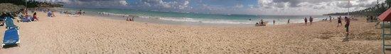 Caribe Club Princess Beach Resort & Spa: panorama plage