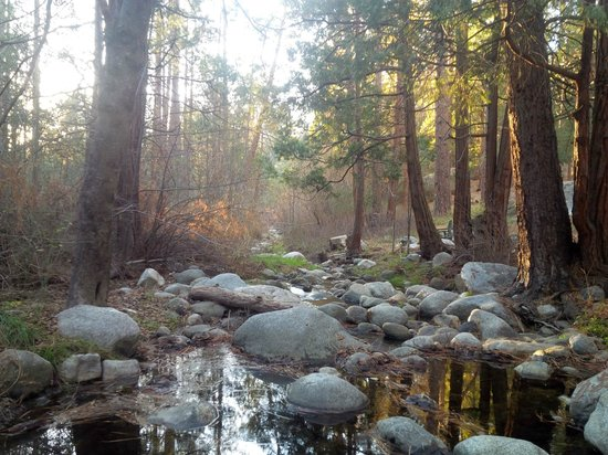 Quiet Creek Inn: Strawberry Creek