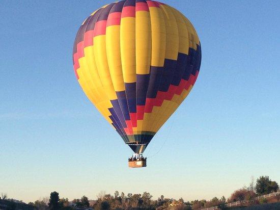 California Dreamin' Balloon Adventures : California Dreamin