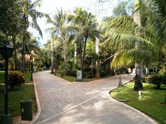 ClubHotel Riu Tequila: Sentiers de l'hôtel
