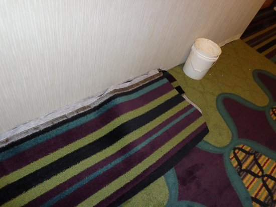 Fairfield Inn St. George: Carpet was being installed right next to our room.