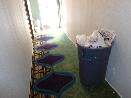 Fairfield Inn St. George : I felt they should have vacuumed the hallway carpets every day, given the fact that so much reno