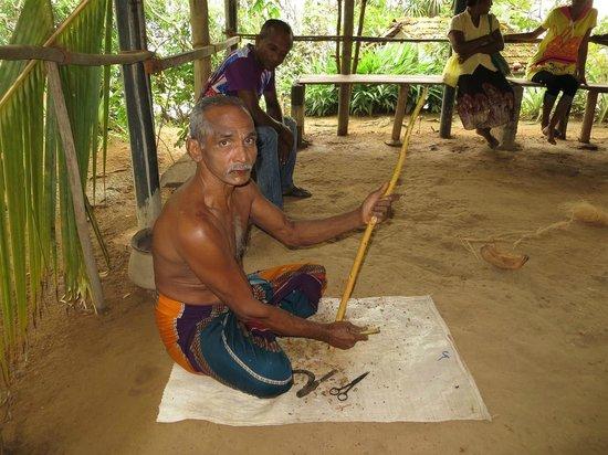 Madu River: Cinnamon island