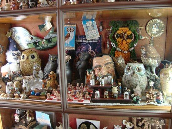 Hotel Balneario Broquetas: gran colección de buhos