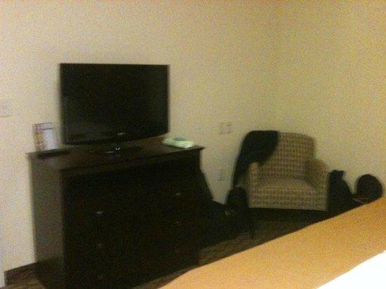 Holiday Inn Express Niles : King Bedroom