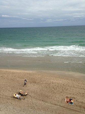 Sandbar Grille : beachy fun food!!!:)