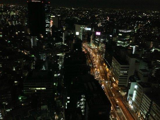Cerulean Tower Tokyu Hotel : 渋谷を見下ろす