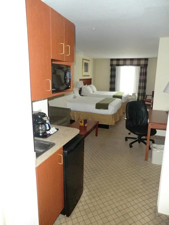 Holiday Inn Express Tampa Fairgrounds: Room