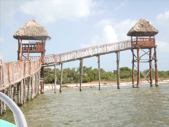 Mandarina Restaurant & Beach club by Casa Las Tortugas: boat tour - Hol Box