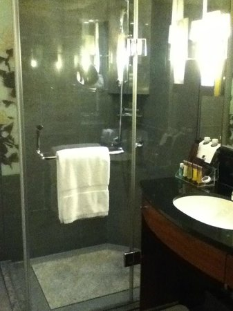 Sheraton Grand Taipei Hotel: shower booth