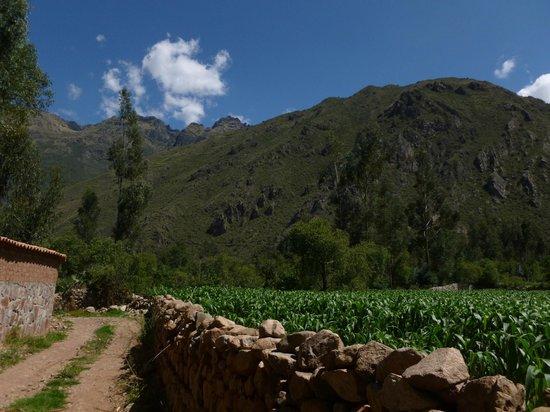 La Capilla Lodge: Local walk