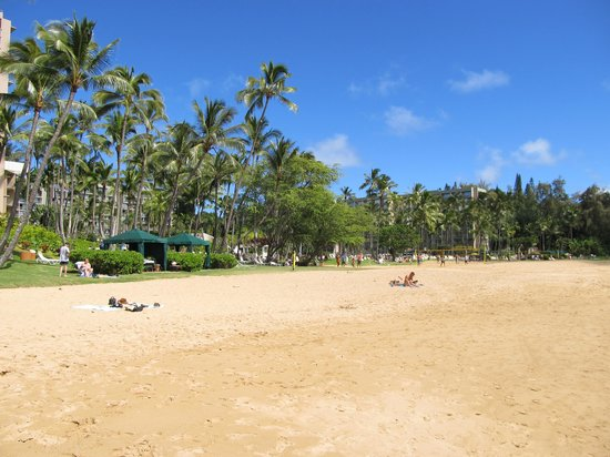 Kaua'i Marriott Resort: Hotel beach