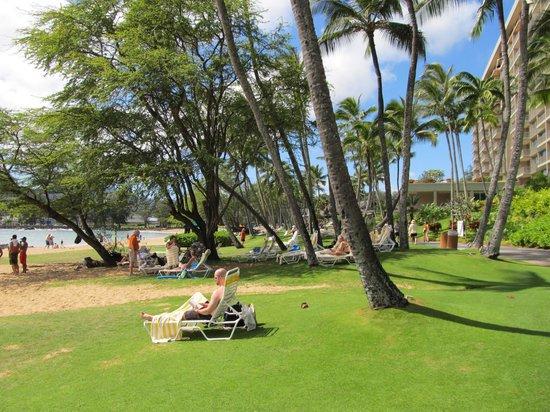 Kaua'i Marriott Resort : Hotel Beach