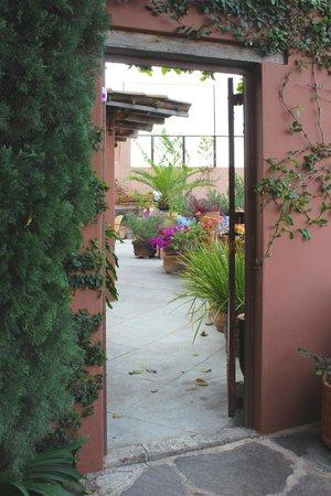 Las Terrazas San Miguel : My Casa at Las Terrazas