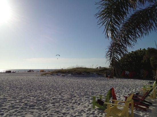 Plaza Beach Hotel - Beachfront Resort : Sunny and always warm poolside