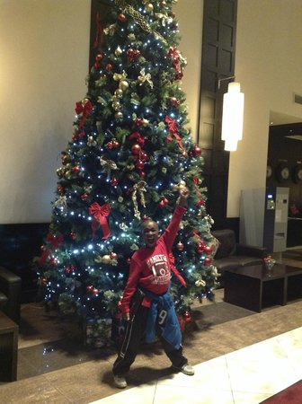 Carlton Hotel Dublin Airport: Christmas tree in lobby.