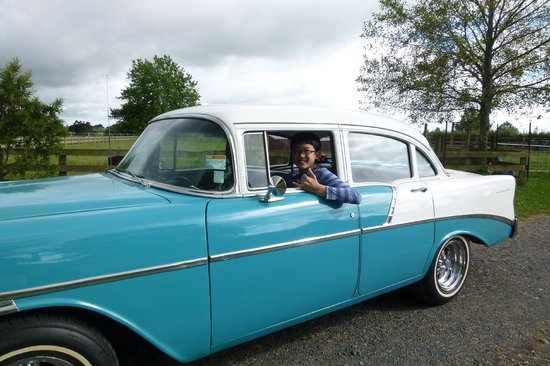 Amberfields Bed & Breakfast : Peter's '56 Chevy