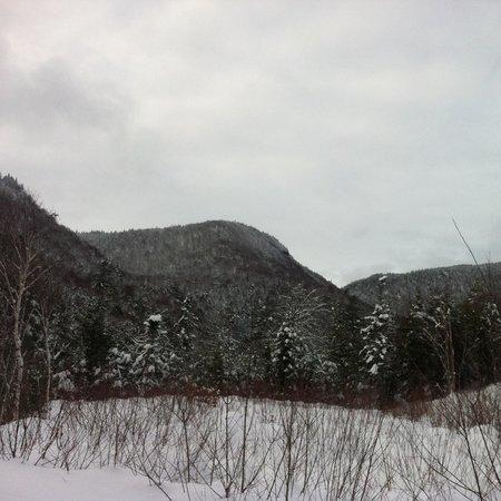 Cabot Shores Wilderness Resort: Hiking