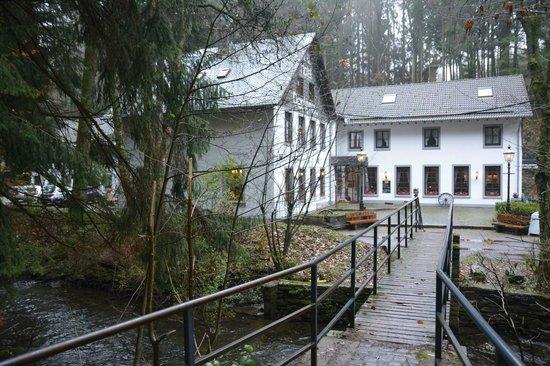 Hotel-Restaurant Perlenau: Vue de l'autre côté de la rivière.
