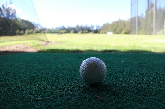 Marty's Golf Range: Driving Range