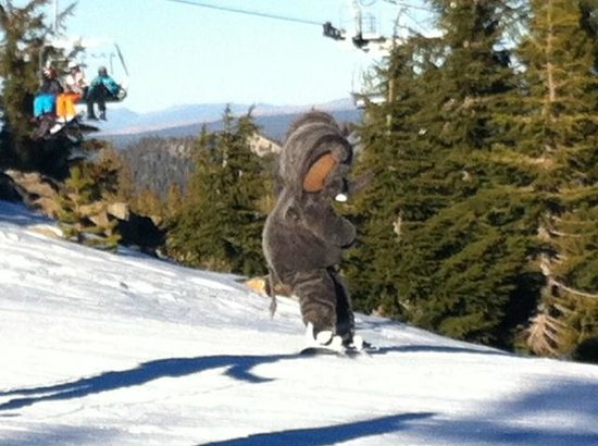 Mammoth Mountain Inn : Snowboarding with Woolly