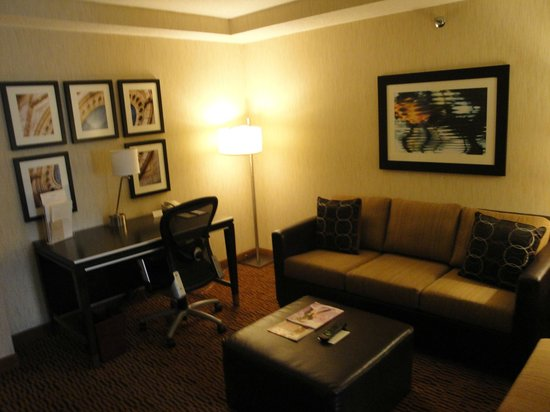 DoubleTree Suites by Hilton Minneapolis: living room area