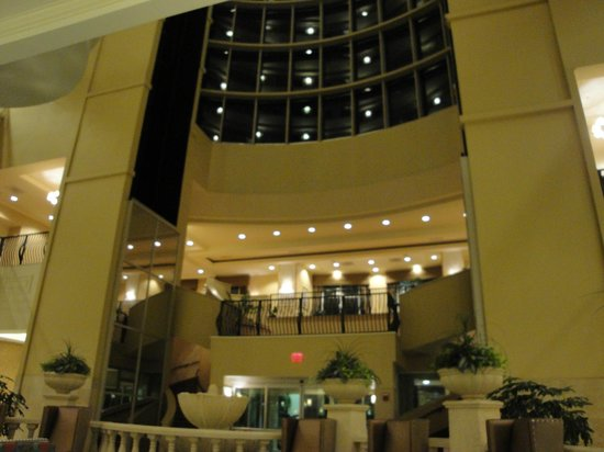 Embassy Suites by Hilton Tampa - Downtown Convention Center : lobby