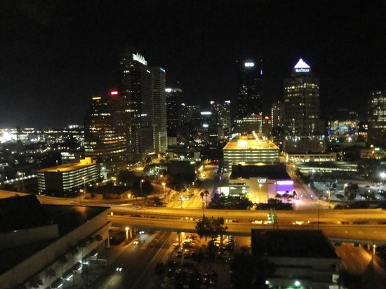 Embassy Suites by Hilton Tampa - Downtown Convention Center: view from room