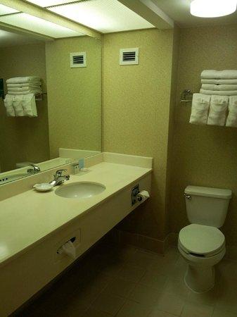 Hampton Inn Adel: Bathroom