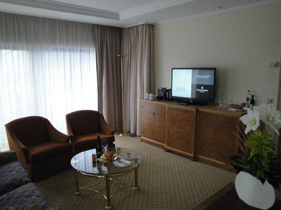 Hotel InterContinental Frankfurt: television