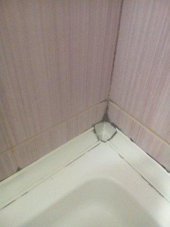 Hotel Beyaz Kugu: ...
