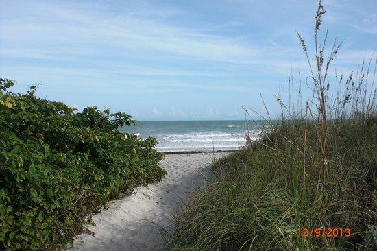 Hampton Inn Cocoa Beach/Cape Canaveral : Cool path to beach.