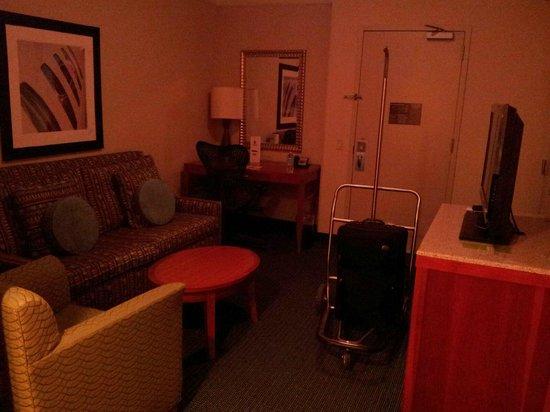 Hilton Garden Inn Tampa Airport Westshore: Room