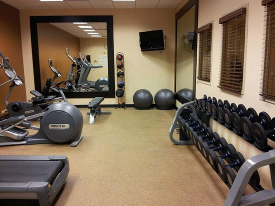 Hilton Garden Inn Tampa Airport Westshore: Gym - exercise room