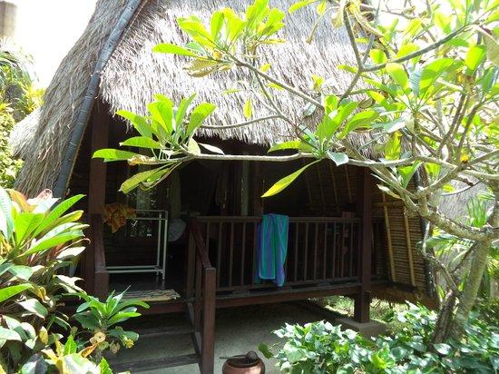 Adi Bungalow : bungalow