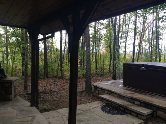 Eagle Creek Escape Guest Cottages : back of the cabin is completely woods