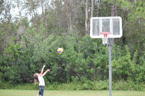 Lion Country Safari KOA Campground: basketball