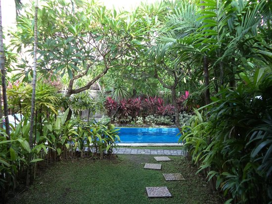 Cafe Locca Homestay: pool