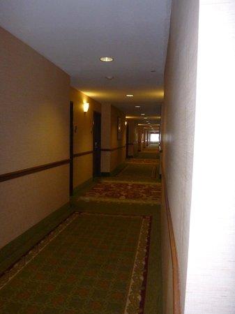 BEST WESTERN PLUS Henderson Hotel: Hallway
