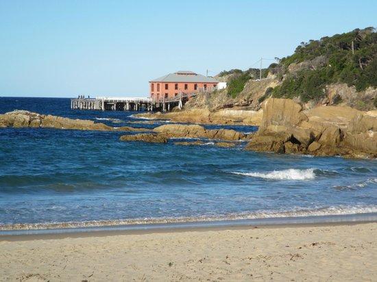 Tathra Beach House: Tathra wharf