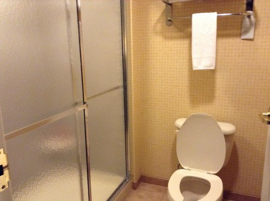 Homewood Suites by Hilton Edgewater - NYC Area : Shower Room (without a bathtub)