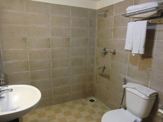 Gaju Suite Hotel : toilet in suite