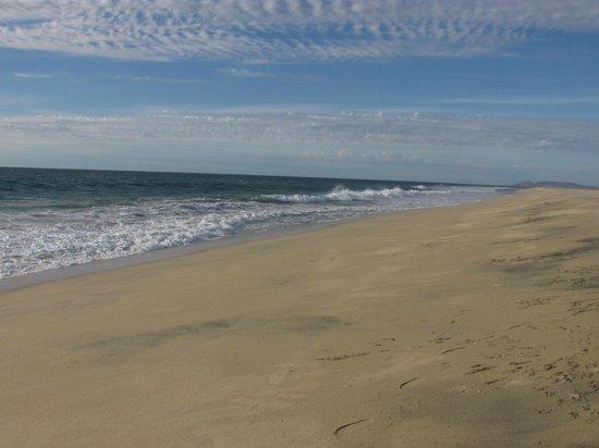 wonderful beach in front of Baja Beach Oasis