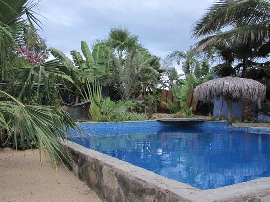 Baja Beach Oasis: Wonderful courtyard for relaxing