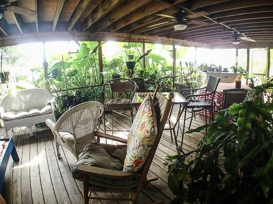 Blue Heron Inn: The cluttered back deck