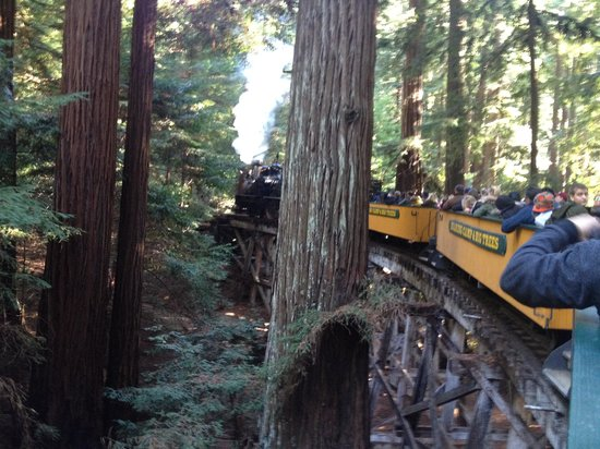 Roaring Camp & Big Trees Narrow-Gauge Railroad: Heading up Bear Mountain