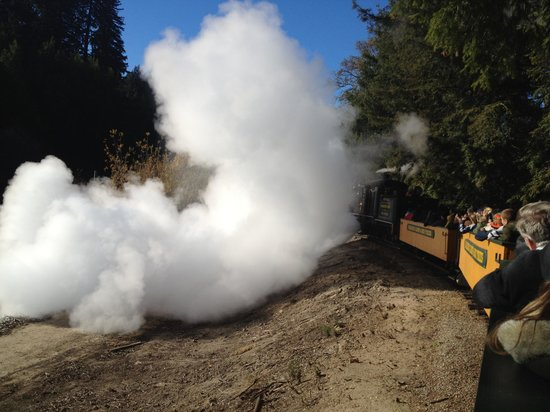 Roaring Camp & Big Trees Narrow-Gauge Railroad: Dumping water on the way down