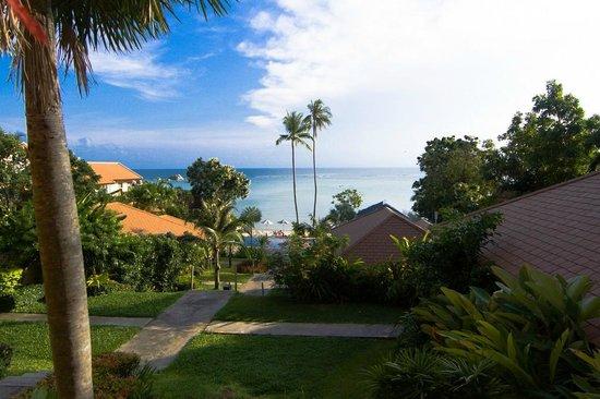 Palm Coco Mantra : Пляж