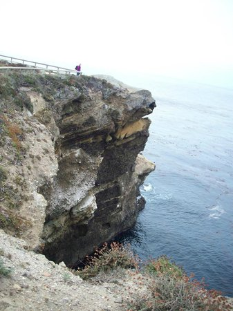 Point Lobos State Reserve : Overhang near Sea Lion island
